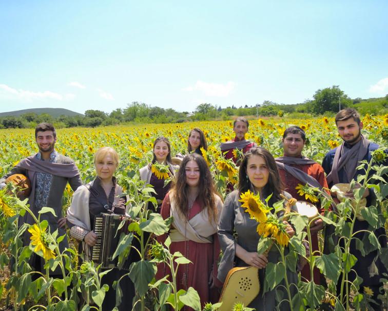 Zedashe In Sunflower Field
