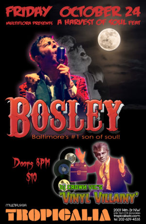 Bosley at Tropicalia